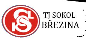 TJ Sokol Březina